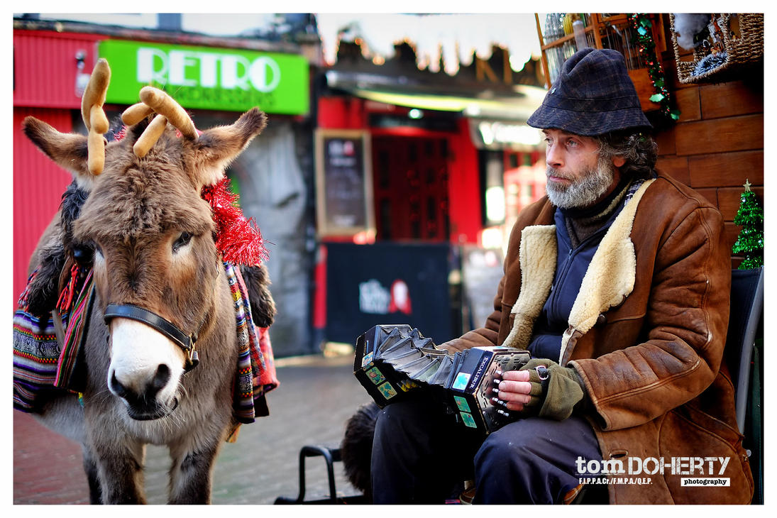 Declan and his Donkey by PicTd