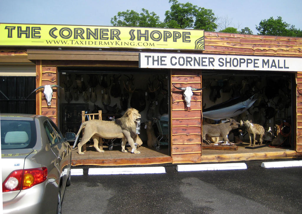 CornerShoppeMall by WeirdCityTaxidermy