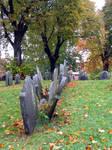 Boston Grave stones