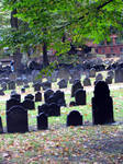 Graves in shades of Grey