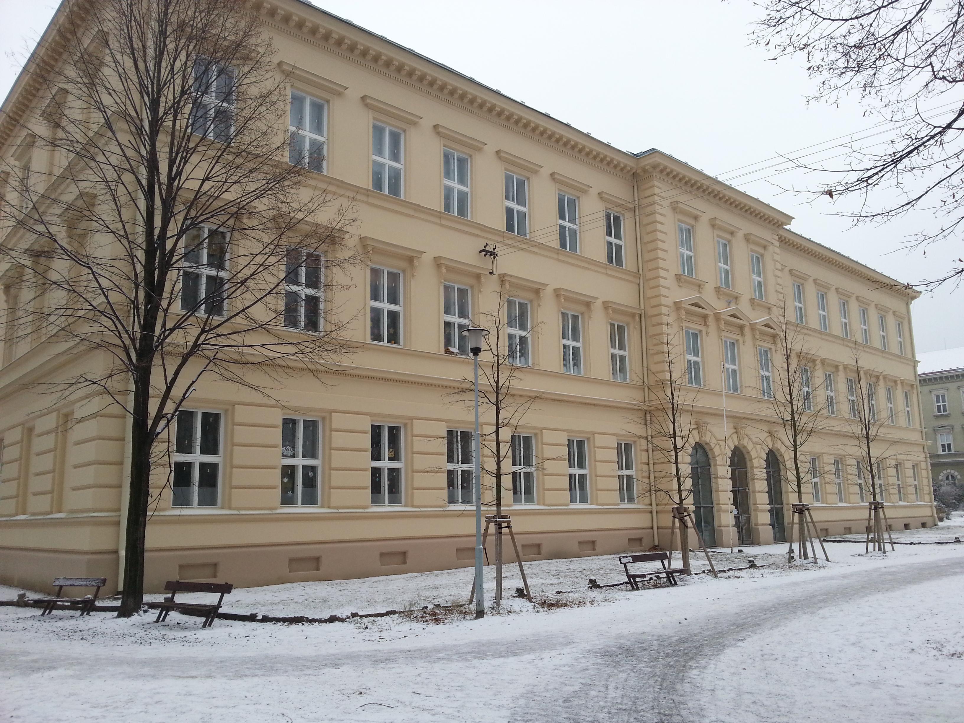 My primary school