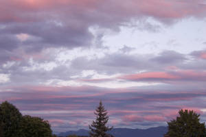 Pink Sky by soffl