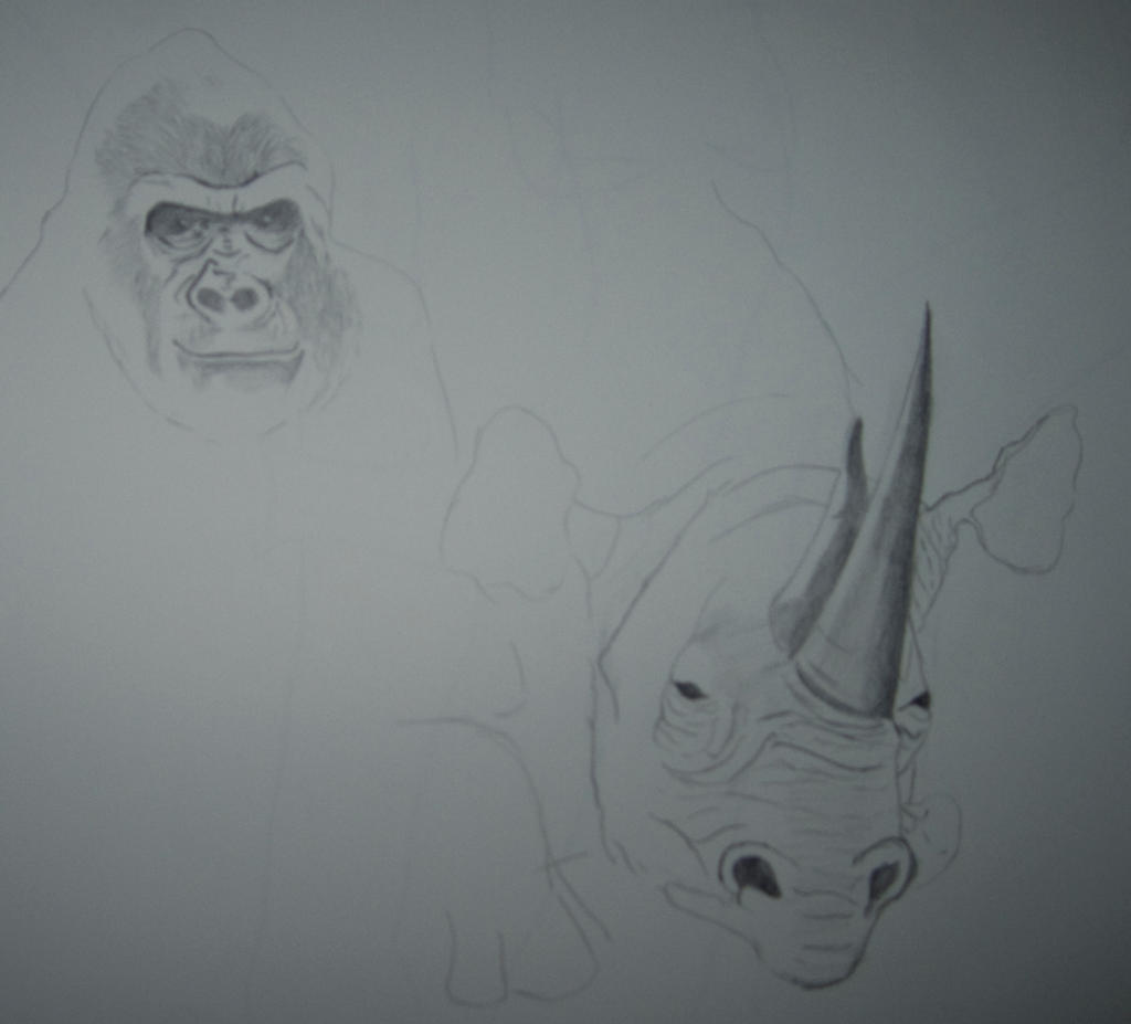 Gorilla and Rhino by soffl