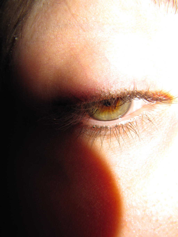 Super Macro Eye by soffl