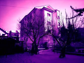 Purple world by attainsky