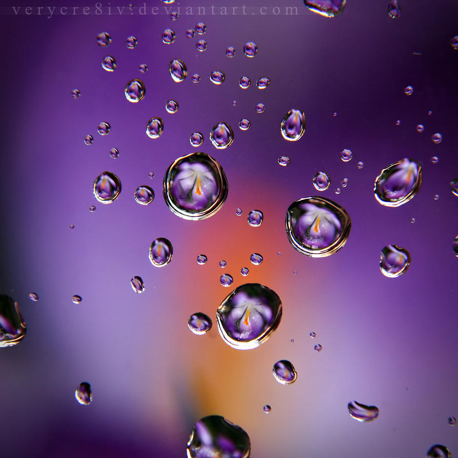 tears of spring by verycre8iv