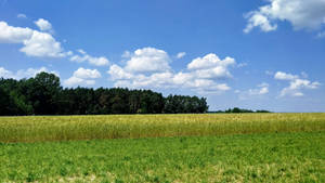 A country scenery