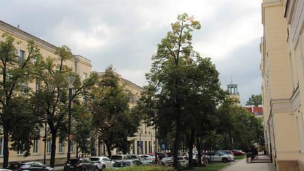 Winnie-the-Pooh street in Warsaw