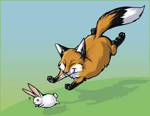 Chubbeh Fox