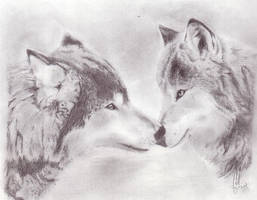 Wolves - Scanned by KittehPirate