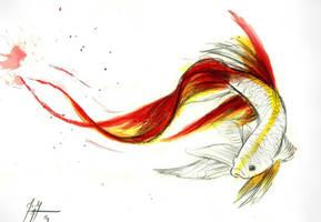 Beta FIsh / Dragonish