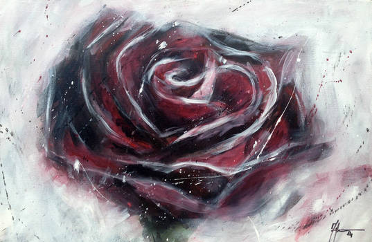 Rose - Study