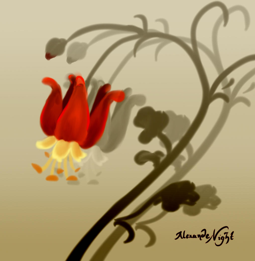 SKETCH A PLANT