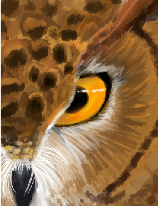 Eagle Owl Eye by crazy-fruit