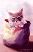 Look - it's a kitten by AoX-SoJ