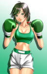 FABTB Boxer Talim by MasterSaruwatari