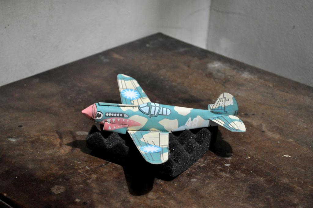 Curtiss P-40 Warhawk by louie1105