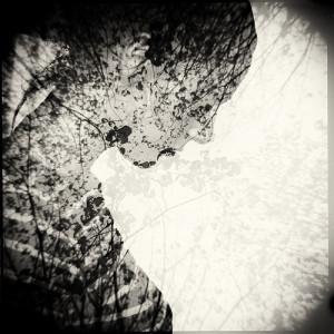 ThemeLibre's Profile Picture