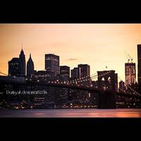 New York - Brooklyn B. by DarkSaiF