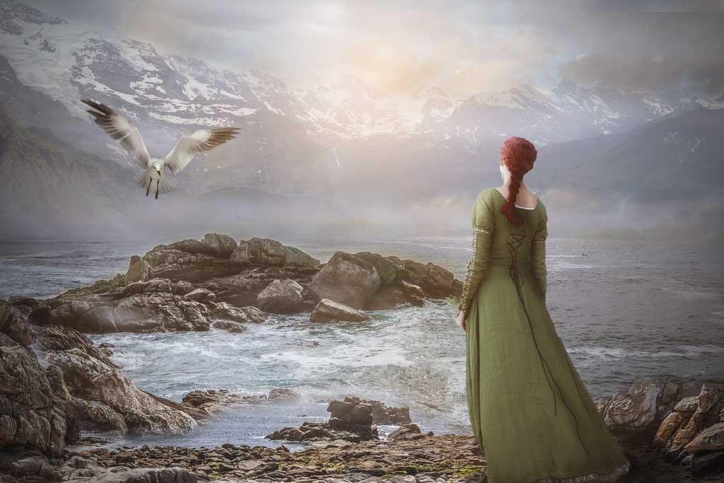 Seagull by svetamk