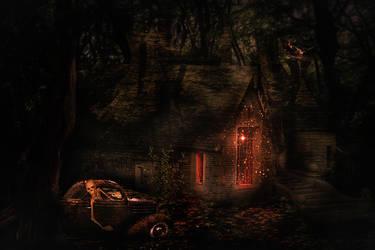Mystery house by svetamk