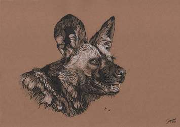 African wild dog (brush pen) by TheAdventureDragon