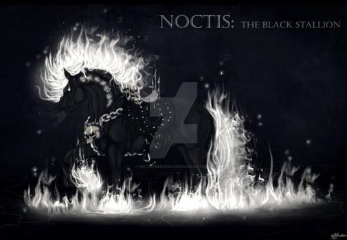Ebony's Summon: Noctis the Black Stallion
