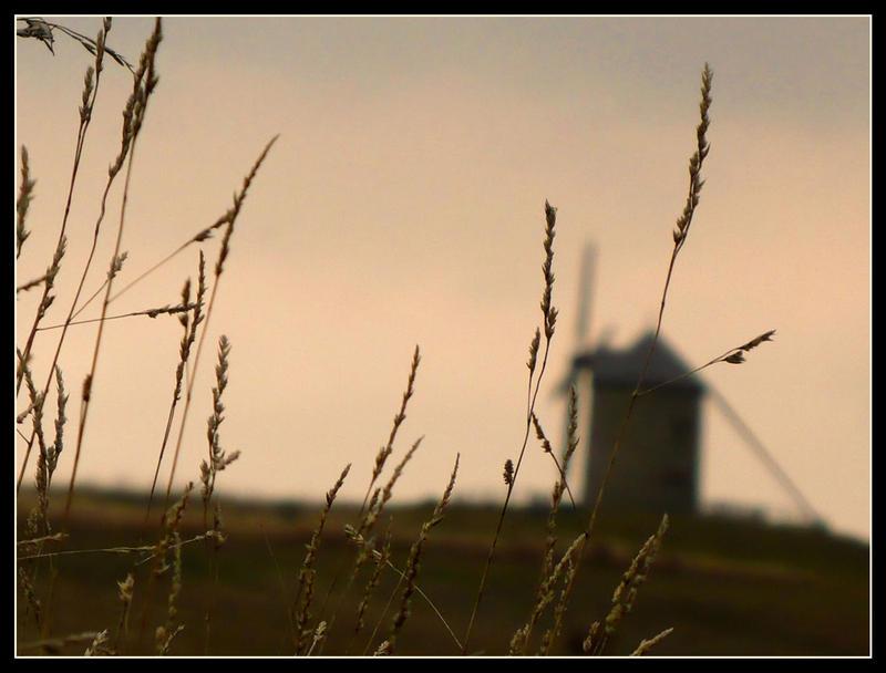 Windmill by fabriloddo