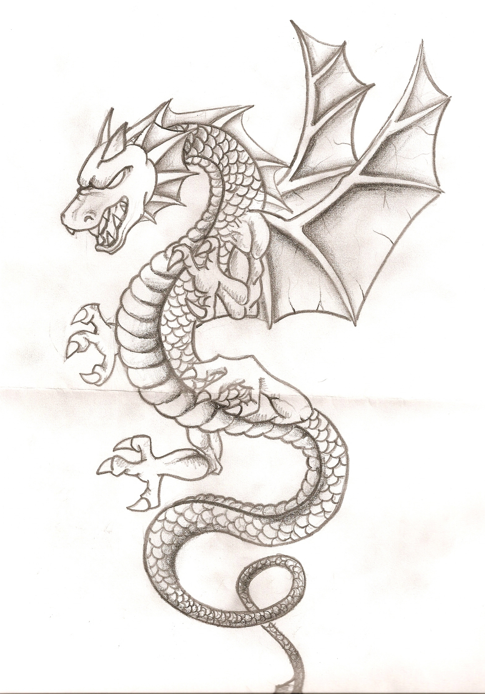 Cabezas De Dragones Para Tatuar dragon dibujos chidos para colorear