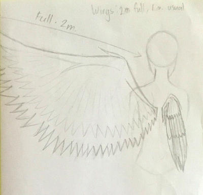 Reference 3: Angel Hopes wings by ShinjitsuForever