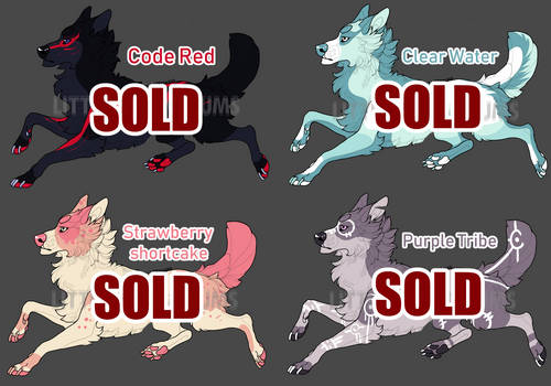 Canine Adopt Batch Auction 2 [CLOSED]
