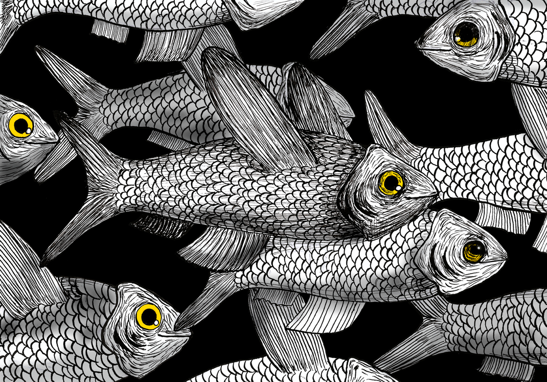Marching fishes by LaisHasekNogueira