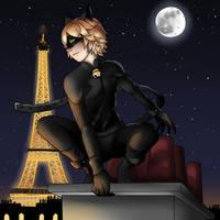 Chat Noir by kiba-chan27