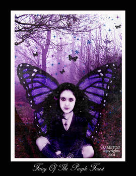 +Fairy+Of+The+Purple+Forest+