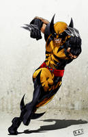 Wolverine by castortroy3497