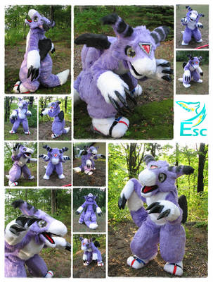 Dorumon Digimon Dragon Fursuit (2013)- Eternalskyy by Eternalskyy