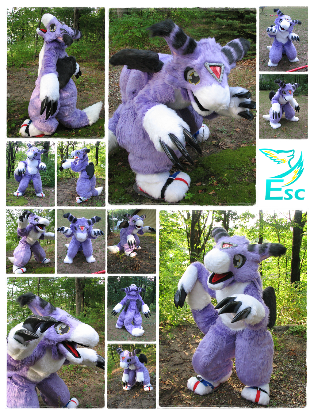 Dorumon Digimon Dragon Fursuit (2013)- Eternalskyy by Eternalskyy