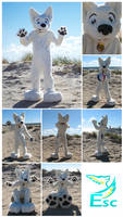 Bolt - White Dog Fursuit - (2014 - 2015)