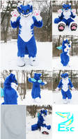 Lilly The Fox (Kemono Hybrid Style) Fursuit (2017)