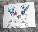 Colours the Canine (Spitz Dog Mix) Quick Portrait