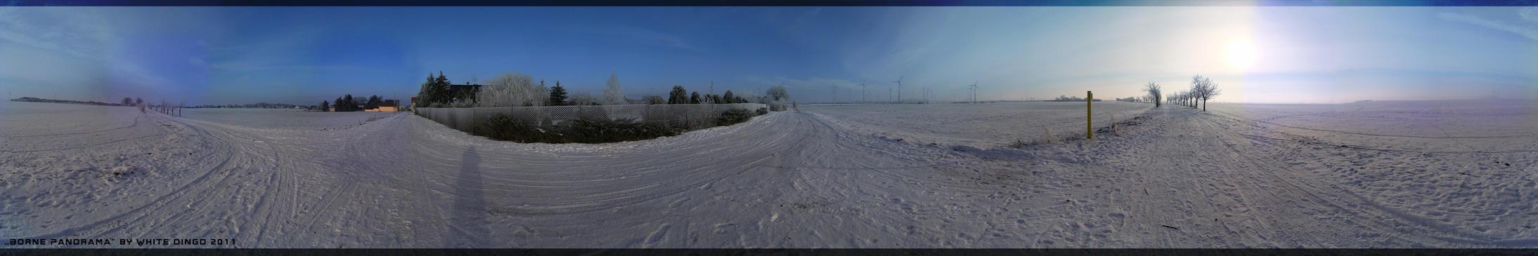 Borne Panorama by XxBaka-pooxX