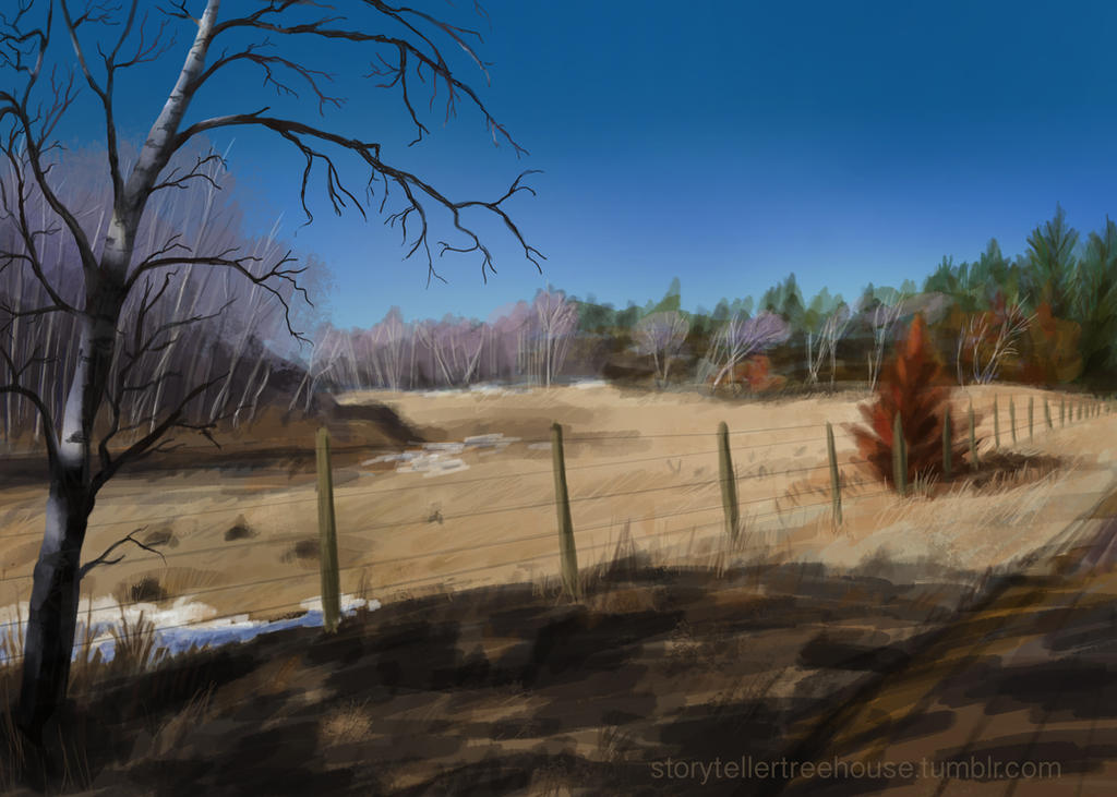 Landscape Study by Evergreena
