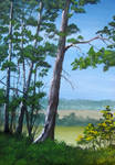 797 Ukrainian Landscape