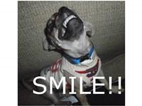 Smile Icon by unicodragon