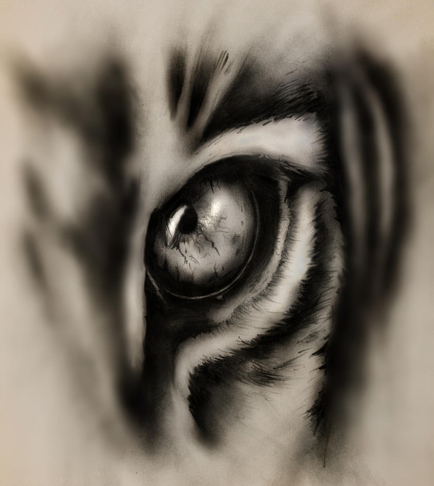 Eye of the Hunter by XxJinkinxX