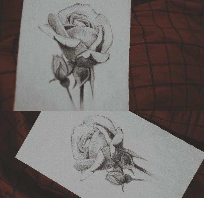 Rose by oliviakutxi
