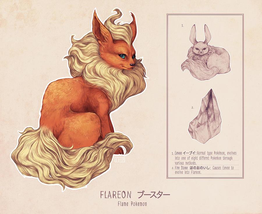 Scientific Illustration: Flareon by ElizabethBeals