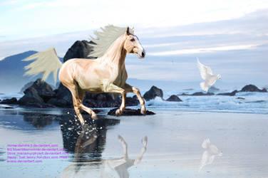 The Beach horse