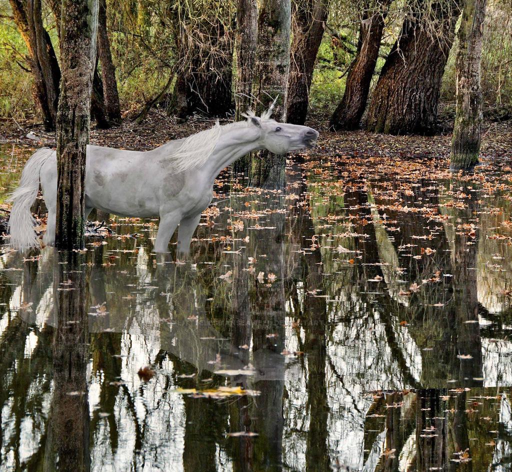 Muddy Unicorn WIP