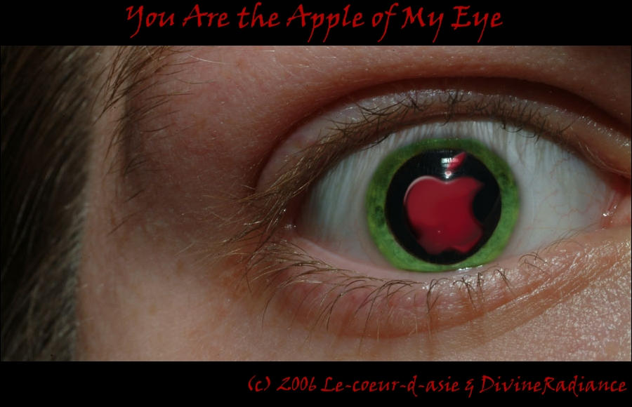You are the apple of my eye - Similar phrases to the apple of my eye?